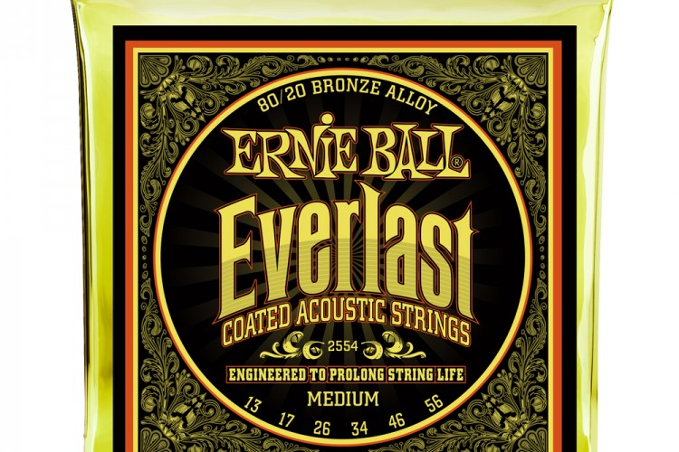 ernie-ball-2