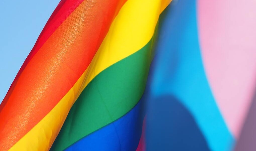 pride_month_resources_icmp_2021